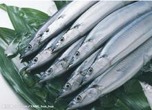 带鱼北京带鱼批发|带鱼批发公司|北京
